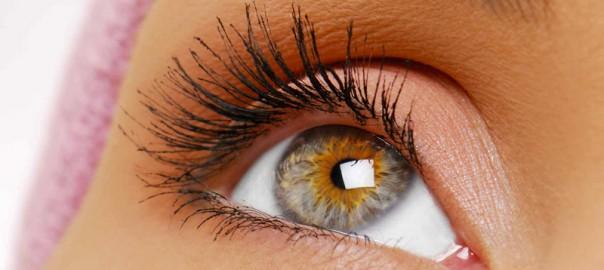 Eyelash Length and Volume
